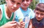 Angunalar ve onlara dost çocuklar