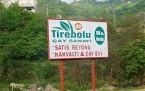 Tirebolu'da çaylar şirketten