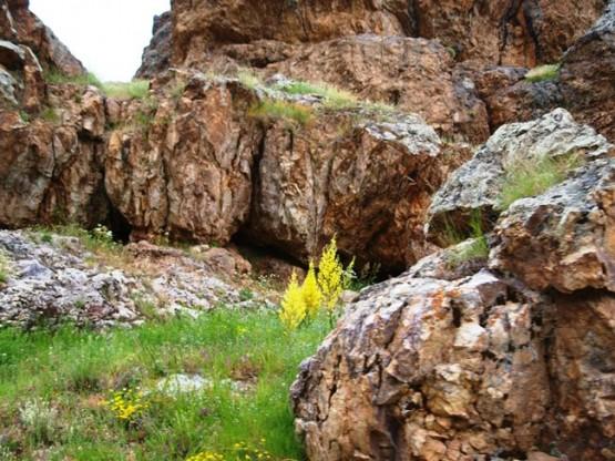 Yukarı Yuvalı köyü /Gümüşhane