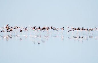 Tuz gölü, Dünya mirası oluyor
