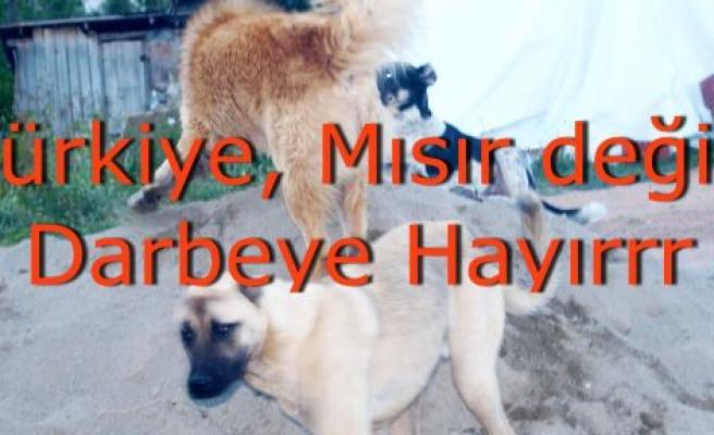 Türkiye, Mısır Değildir! Darbe'ye hayır