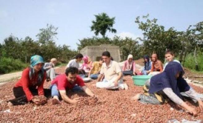 Yine Ramazan ve yine Fındık ayı