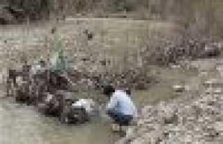 Dilek ağacı değil çöp!