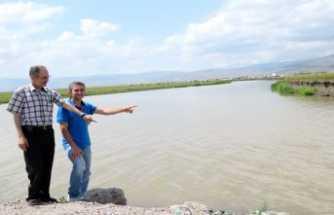 Ardahan'da Kura Nehri Hangi Yönde Akar?