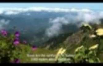 ifakat-belgeseli- 1