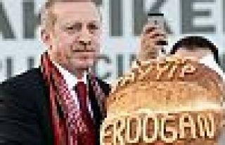 """""""Vesayetler dönemi artık geride kalmıştır"""""""