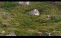 Vahşi kafkasya belgesel